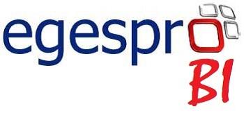 EgesproBI Inteligencia Empresarial